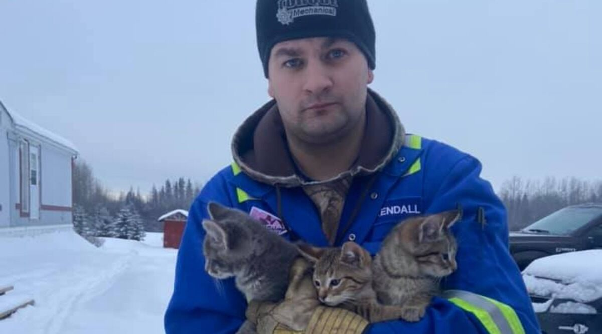 Kendall Diwisch pictured with the kittens he saved