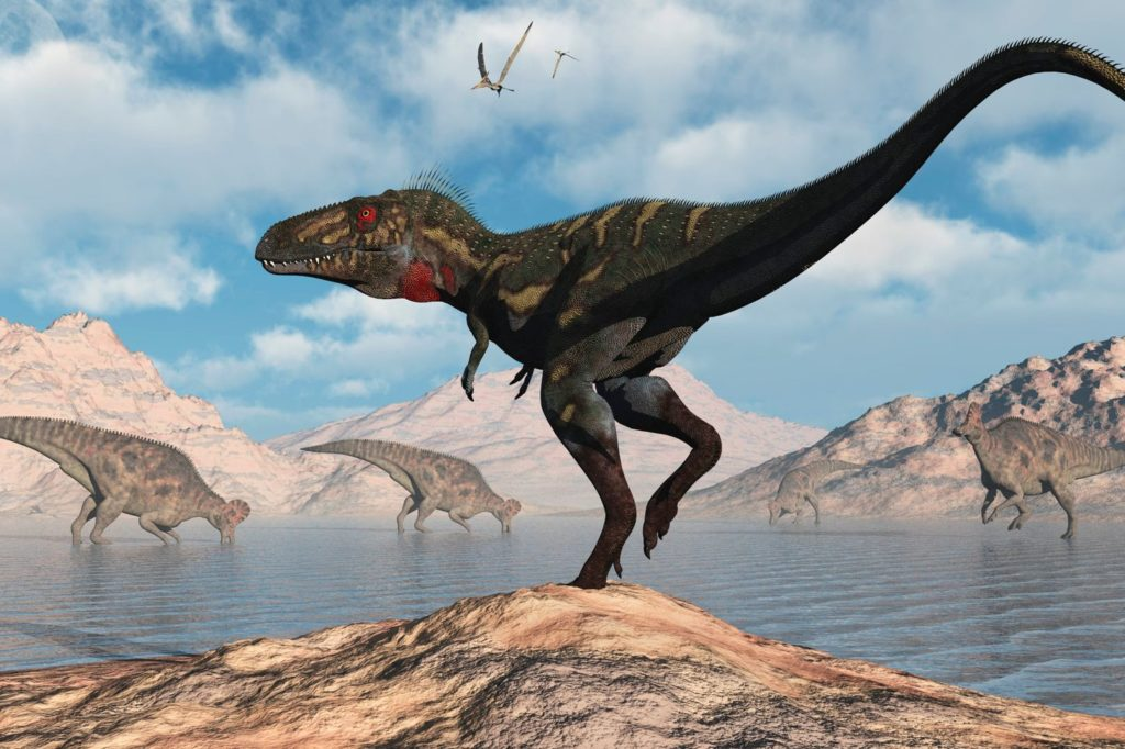 Small 'Cousins' of the Tyrannosaurus Rex May Have Been Its Juveniles