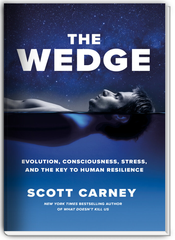 The book cover of Scott Carney's book The Wedge