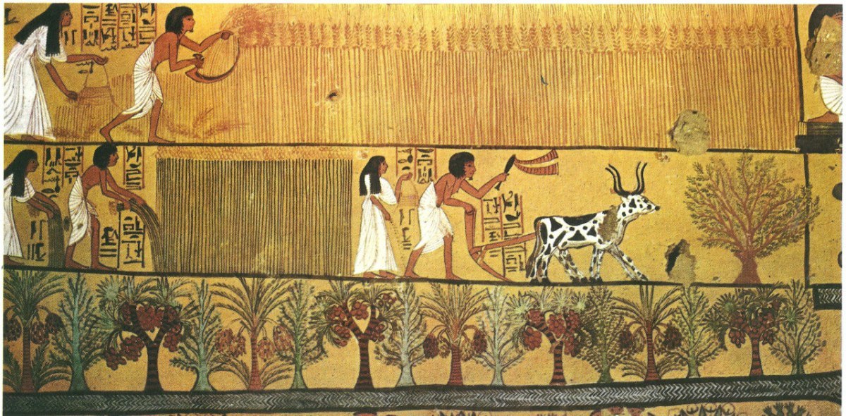 ancient Egypt flax industry