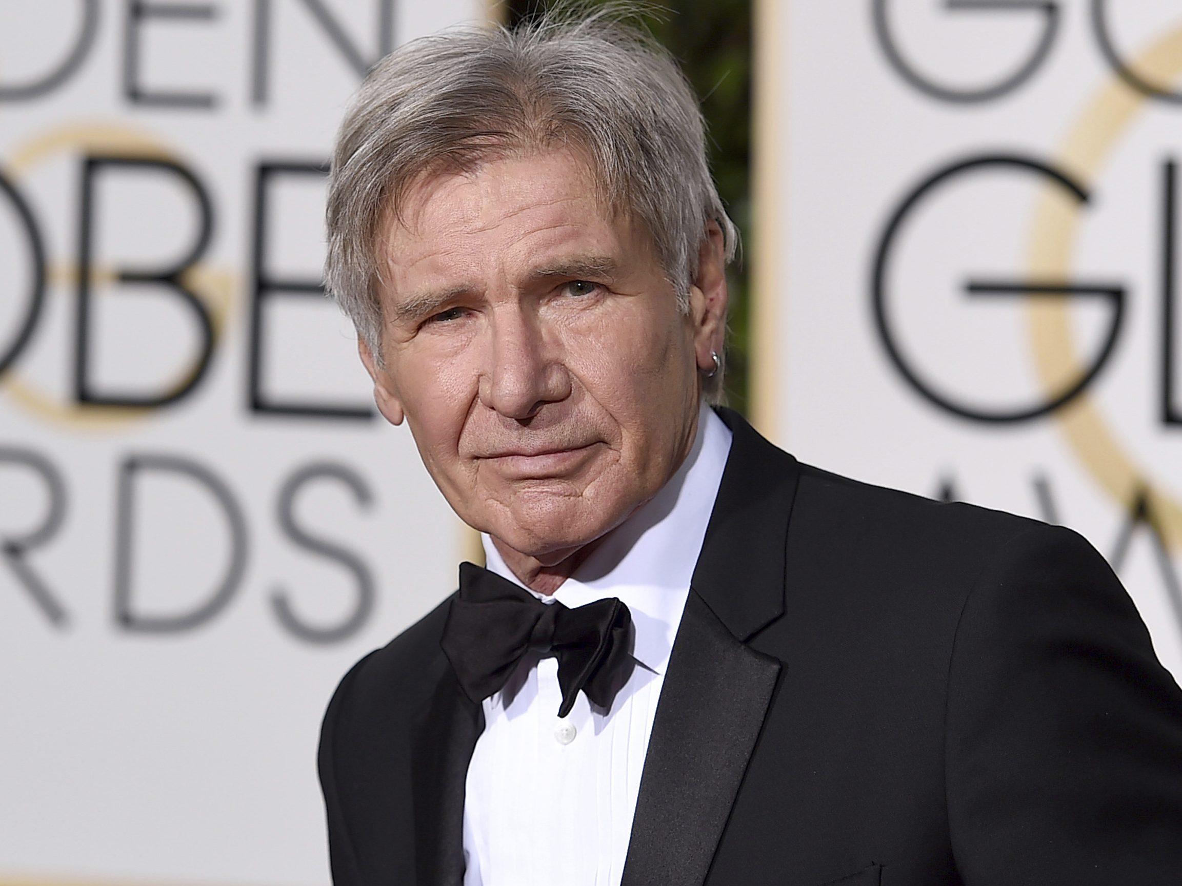 Harrison Ford Portrait