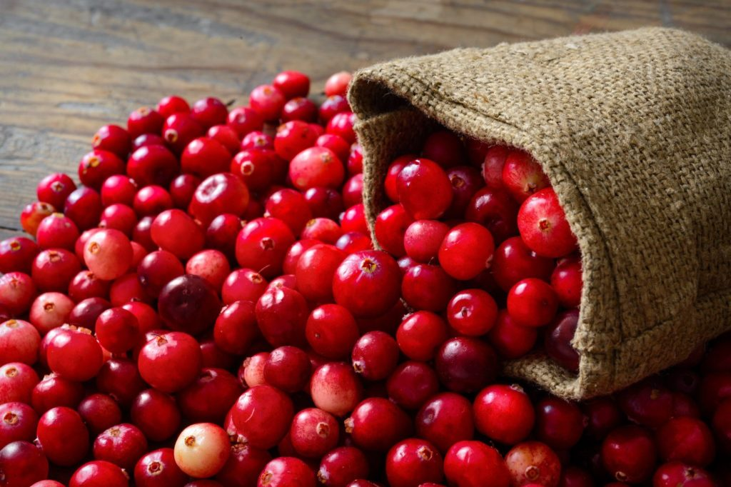 Here Is the Rather Sweet History Behind the Cranberry Tart