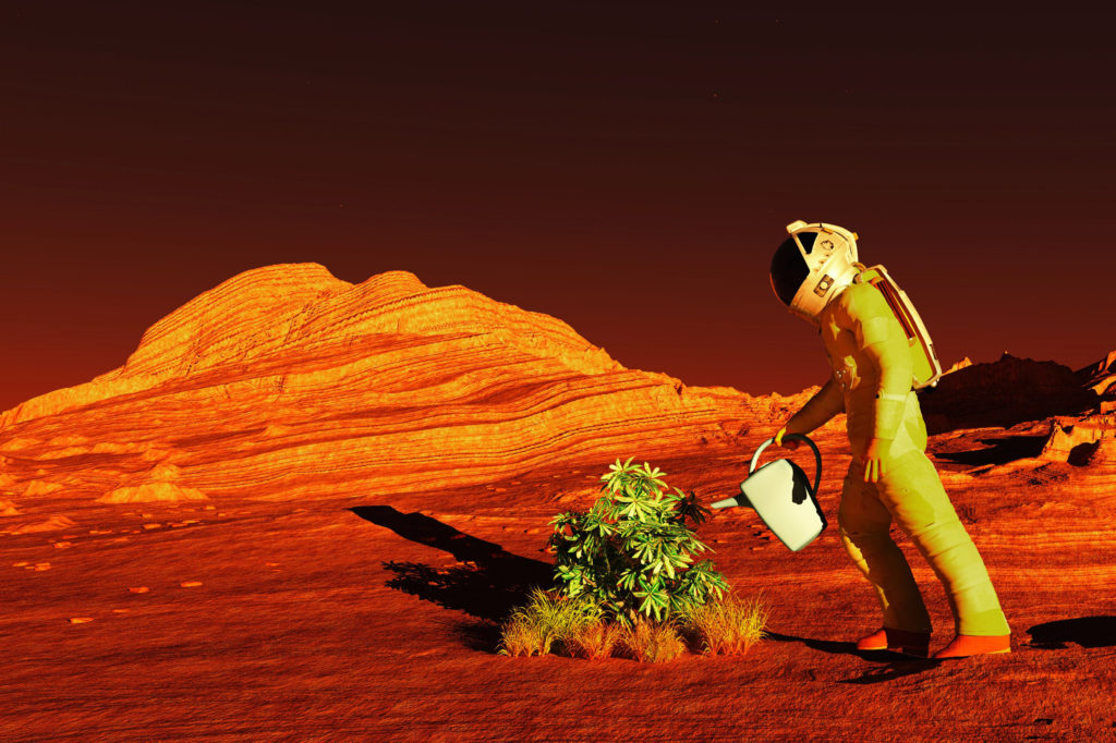 Growing crops on Mars