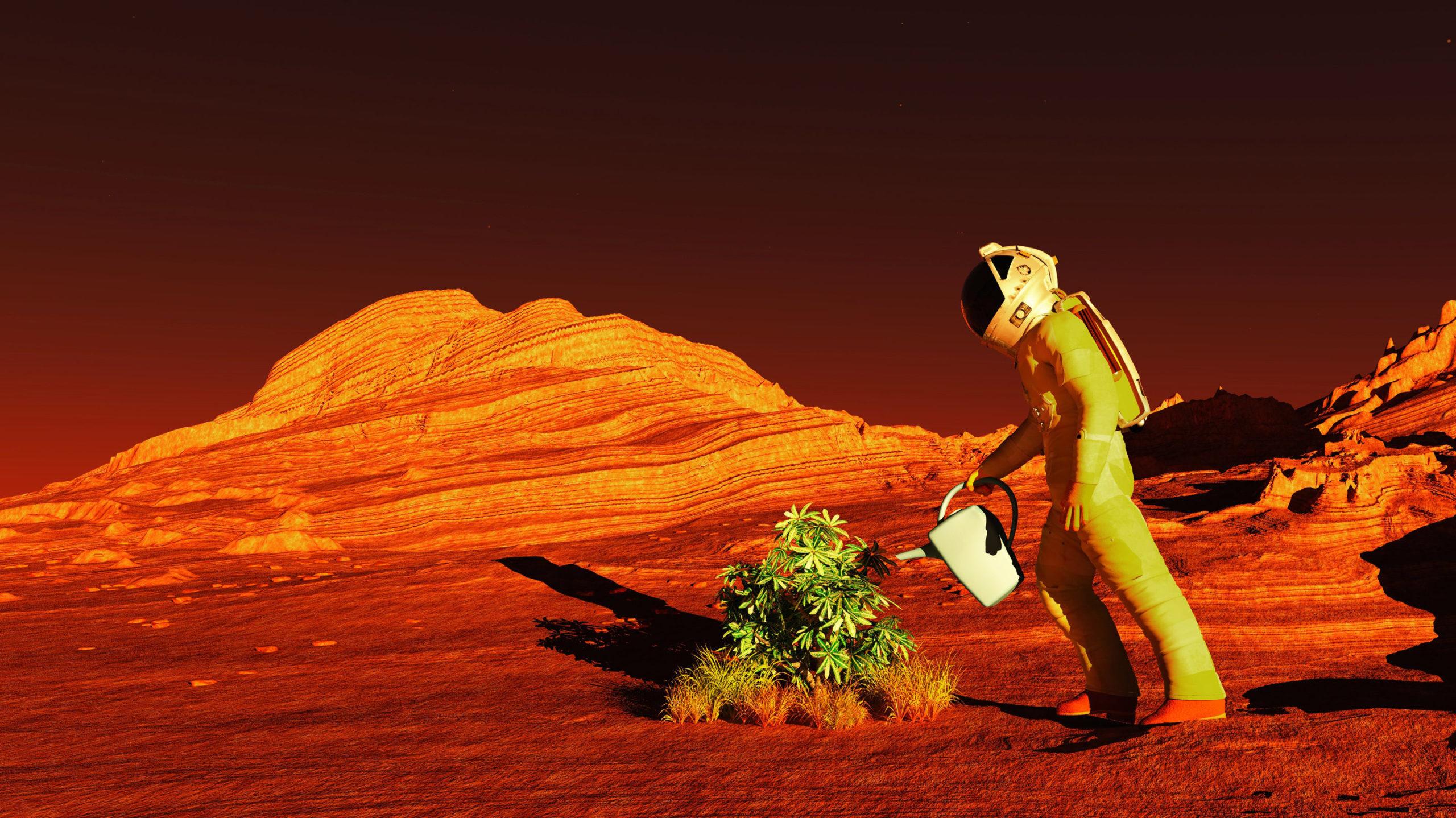 Growing crops on Mars