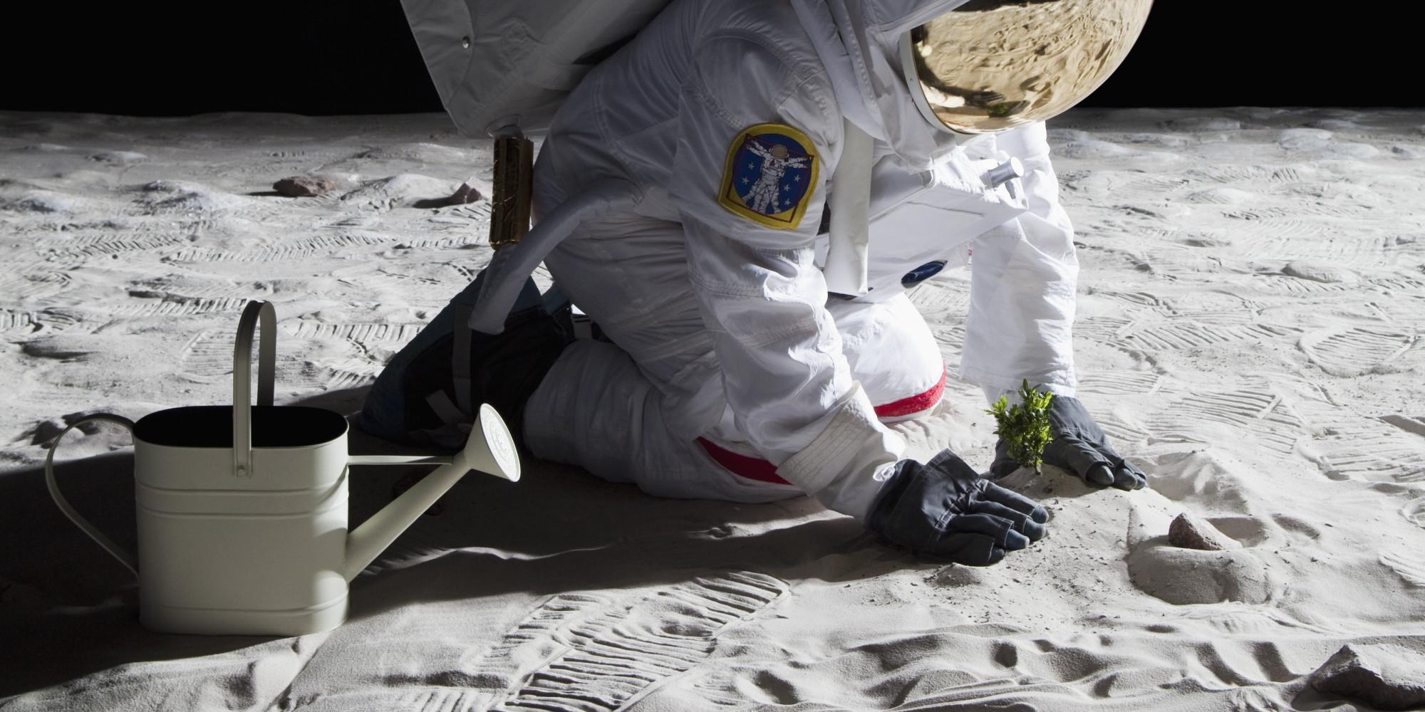 An astronaut gardening on the moon