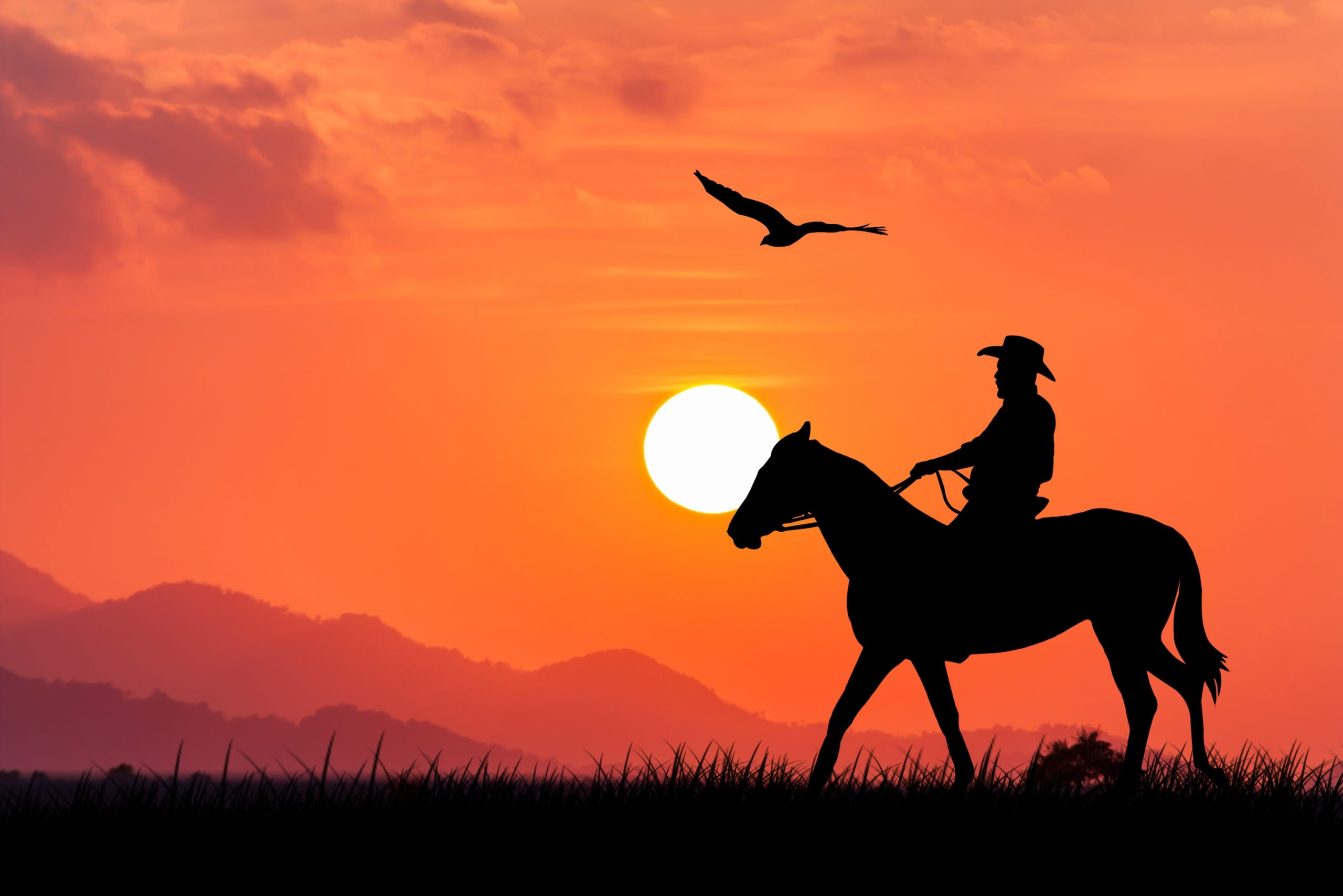 A Wild West sunset picture - a cowboy riding his horse and an eagle is flying over them