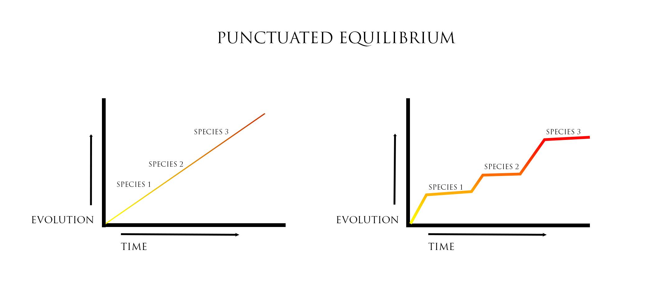 Example Of Equilibrium