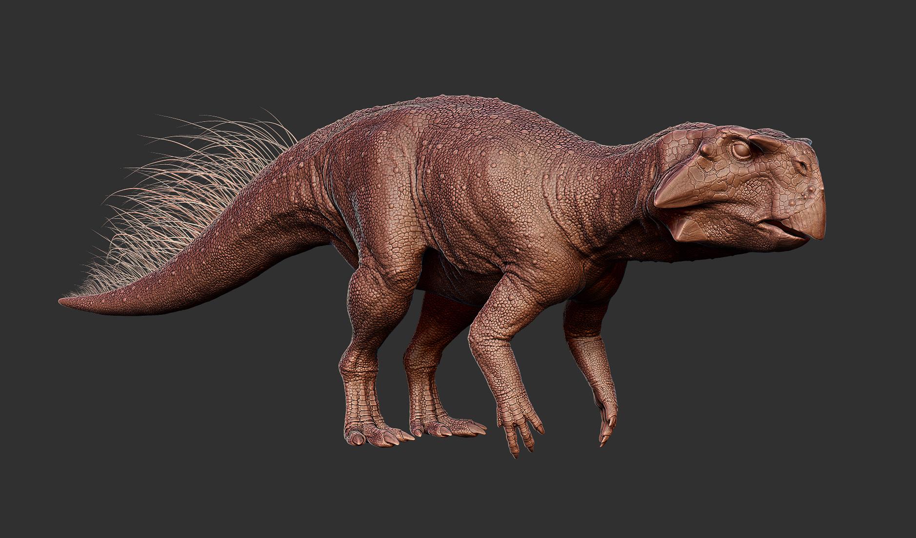 Psittacosaurus - dinosaur model