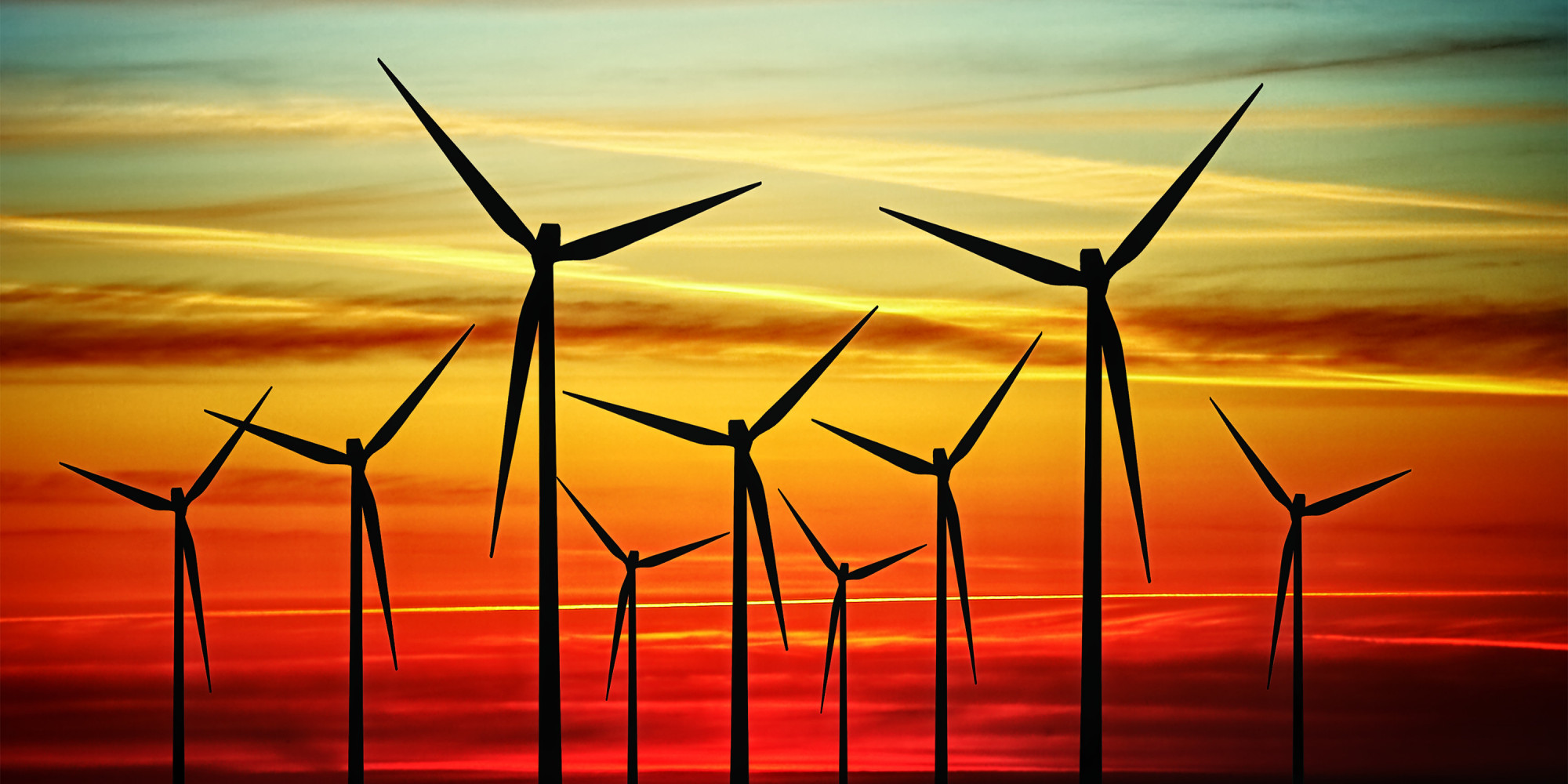 Researchers Look For Ways to Protect Birds as U.S. Wind Farms Expand