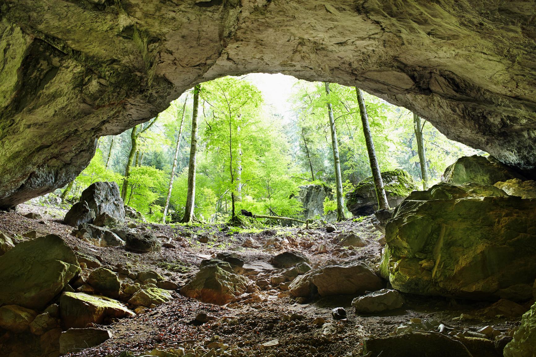 The Galbena River Cave in Apuseni mountains